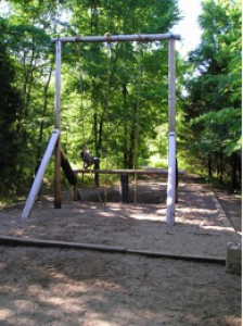 Swing Stop and Jump
